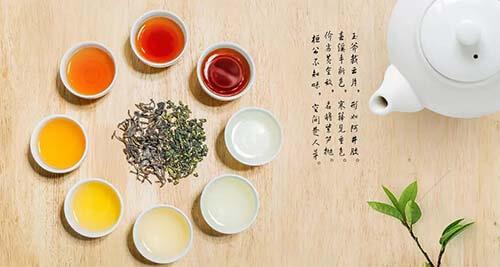 烏龍茶種類有多少