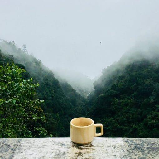 台灣高山茶比較